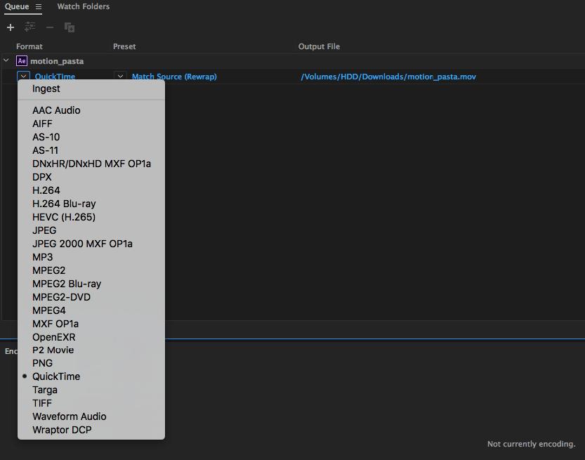 Media Encoder Format Quicktime